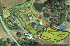Design of farm scale food forests at Full Bloom Farm