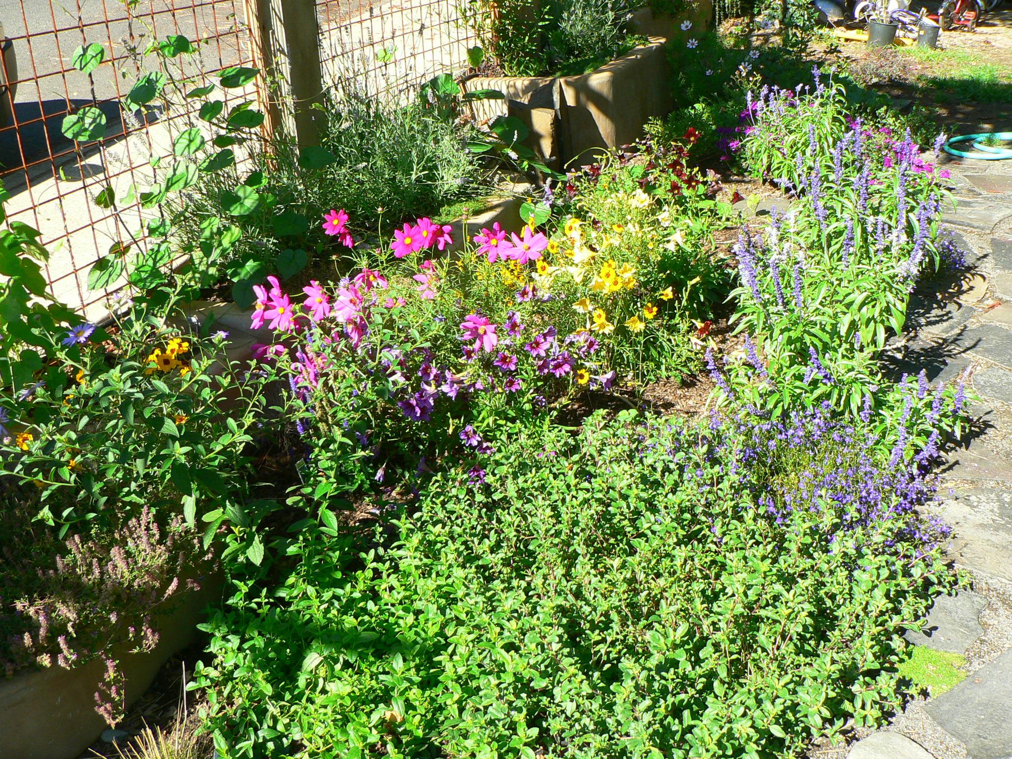 Small Yard Gardens