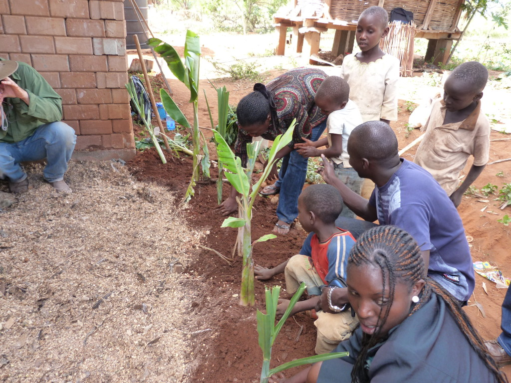 Installing a grey water banana circle in Kenya