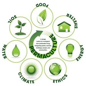 permaculture-image